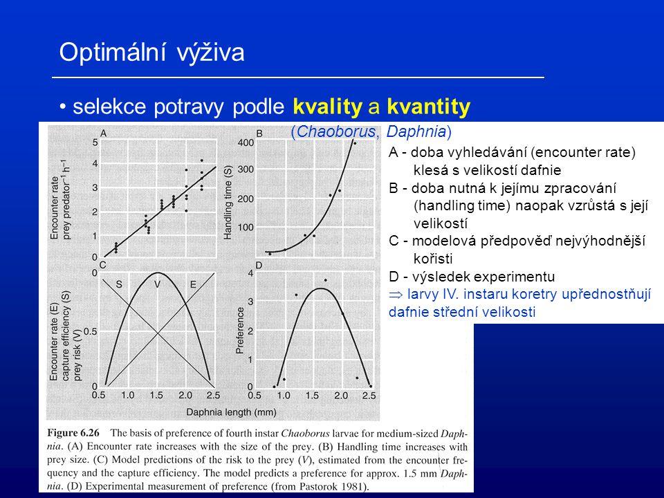 Optimální výživa selekce potravy podle kvality a kvantity