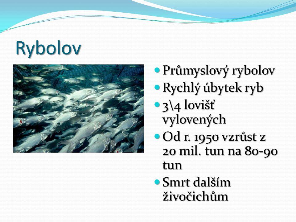 Rybolov Průmyslový rybolov Rychlý úbytek ryb 3\4 lovišť vylovených