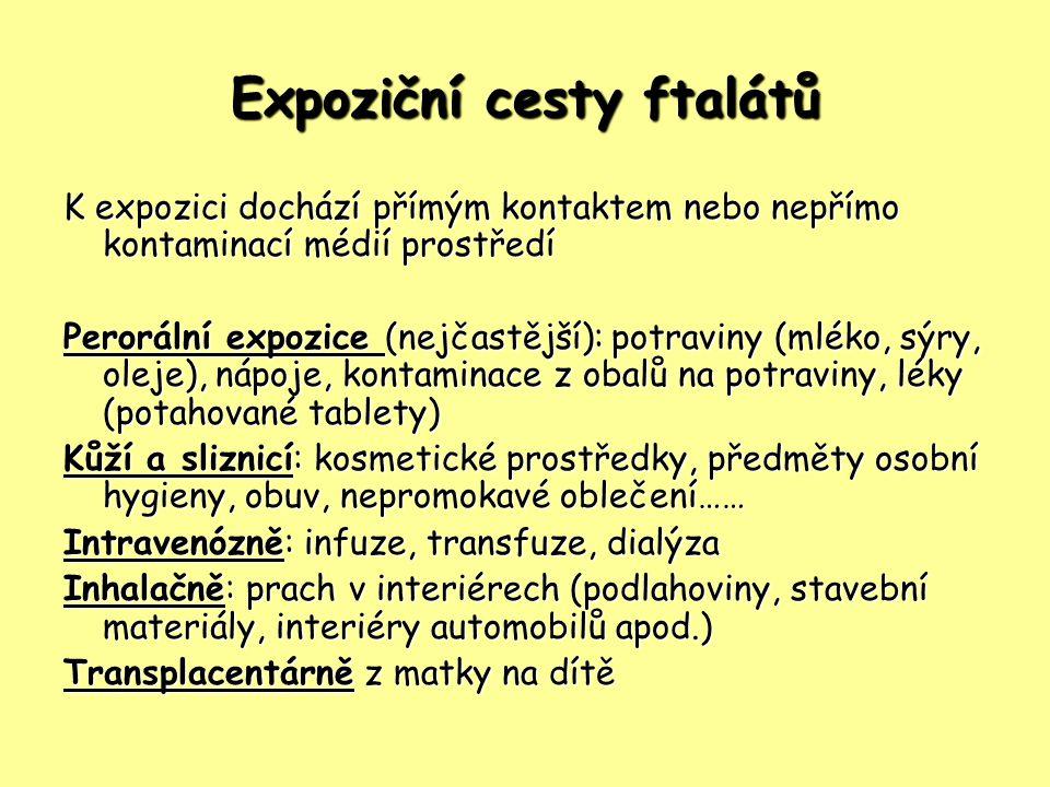 Expoziční cesty ftalátů