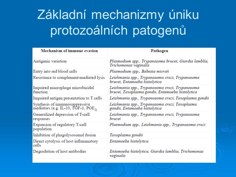 Základní mechanizmy úniku protozoálních patogenů