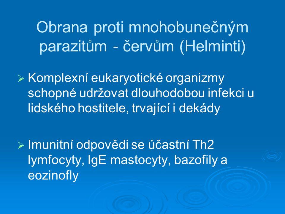 Obrana proti mnohobunečným parazitům - červům (Helminti)