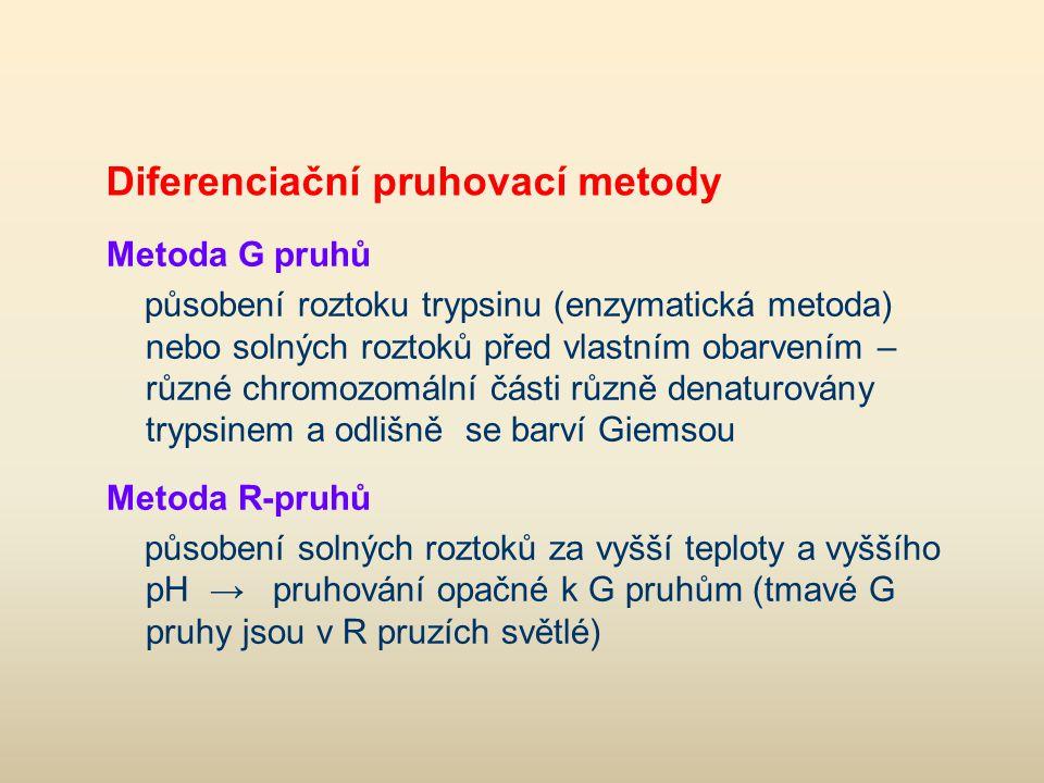 Diferenciační pruhovací metody