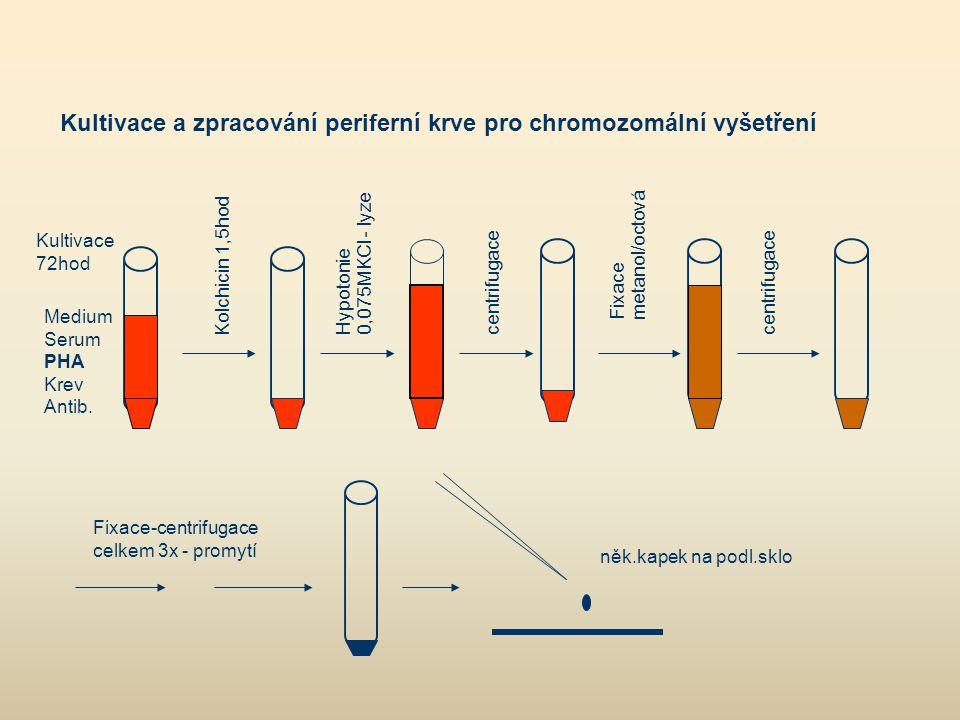 Kultivace a zpracování periferní krve pro chromozomální vyšetření