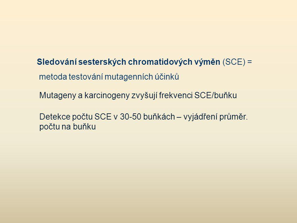 Sledování sesterských chromatidových výměn (SCE) =