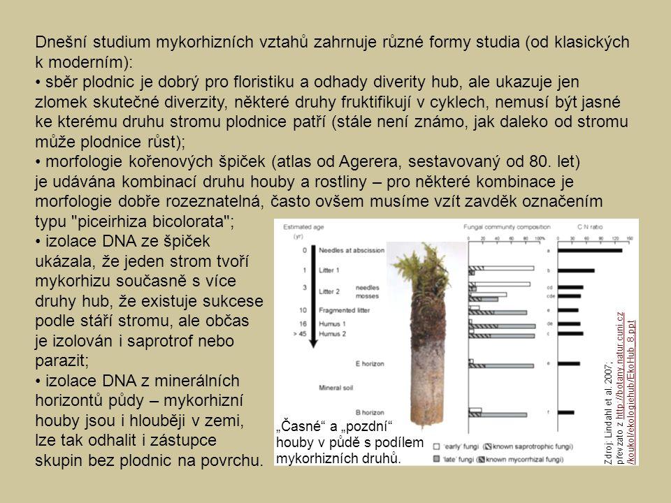 Dnešní studium mykorhizních vztahů zahrnuje různé formy studia (od klasických k moderním): • sběr plodnic je dobrý pro floristiku a odhady diverity hub, ale ukazuje jen zlomek skutečné diverzity, některé druhy fruktifikují v cyklech, nemusí být jasné ke kterému druhu stromu plodnice patří (stále není známo, jak daleko od stromu může plodnice růst); • morfologie kořenových špiček (atlas od Agerera, sestavovaný od 80. let) je udávána kombinací druhu houby a rostliny – pro některé kombinace je morfologie dobře rozeznatelná, často ovšem musíme vzít zavděk označením typu piceirhiza bicolorata ;