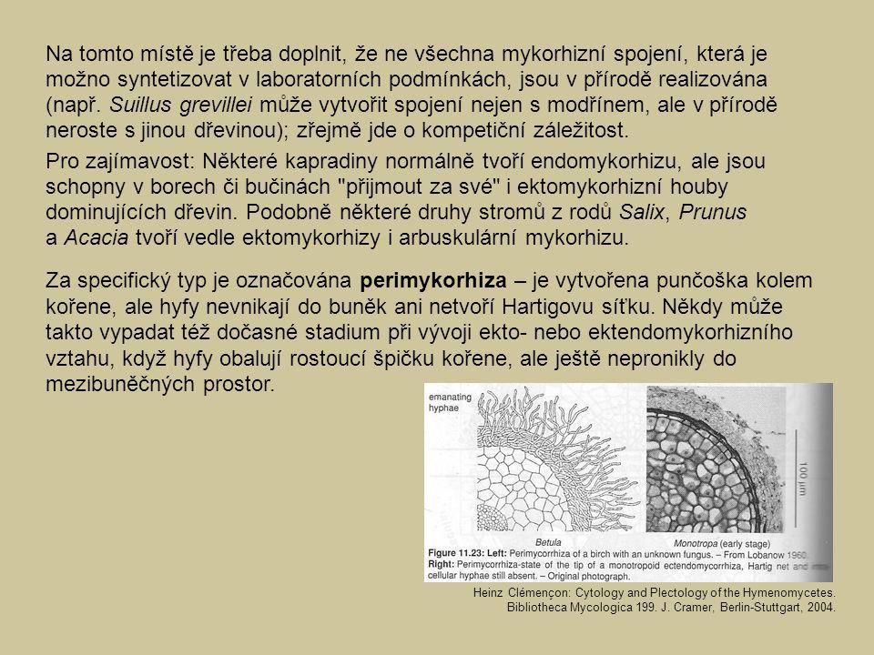 Na tomto místě je třeba doplnit, že ne všechna mykorhizní spojení, která je možno syntetizovat v laboratorních podmínkách, jsou v přírodě realizována (např. Suillus grevillei může vytvořit spojení nejen s modřínem, ale v přírodě neroste s jinou dřevinou); zřejmě jde o kompetiční záležitost.