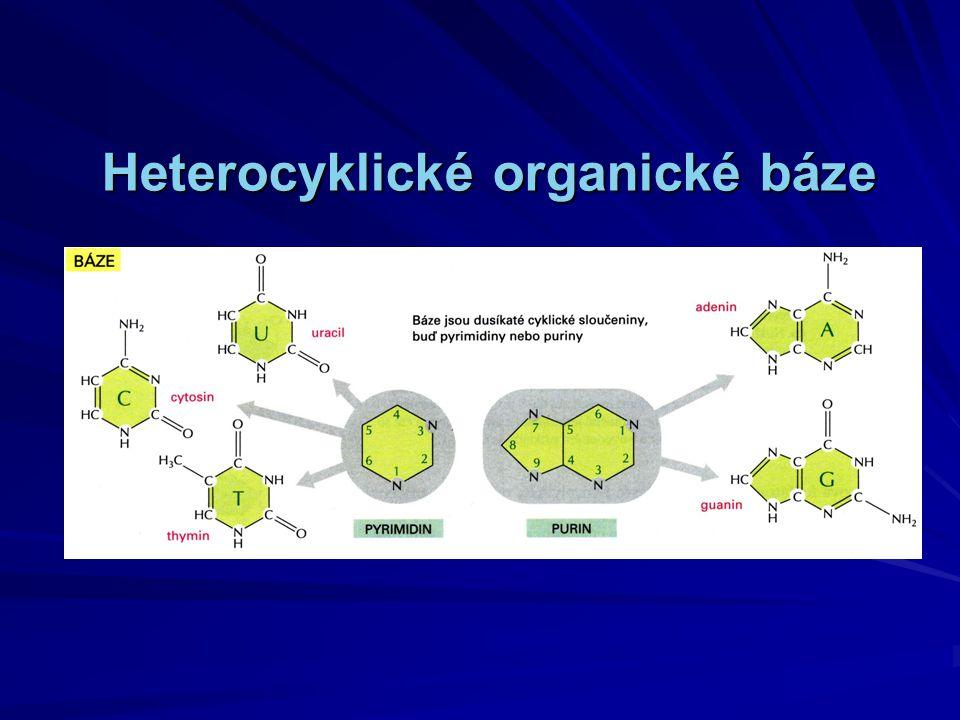 Heterocyklické organické báze