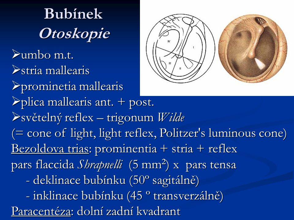 Bubínek Otoskopie umbo m.t. stria mallearis prominetia mallearis
