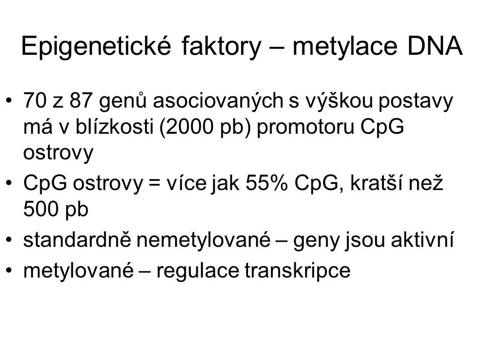 Epigenetické faktory – metylace DNA