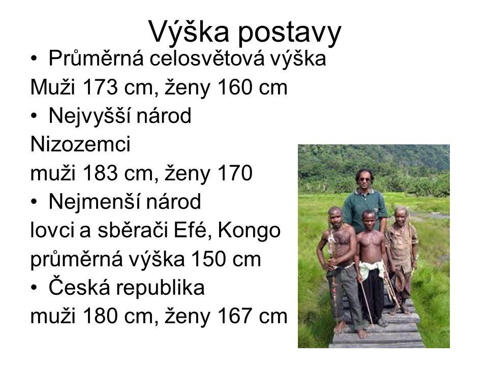 Výška postavy Průměrná celosvětová výška Muži 173 cm, ženy 160 cm