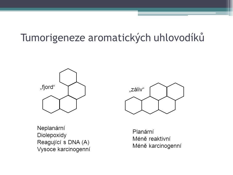 Tumorigeneze aromatických uhlovodíků