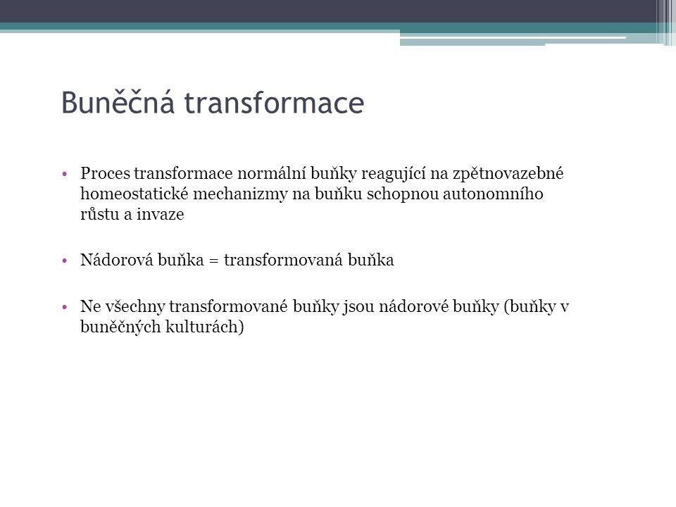 Buněčná transformace