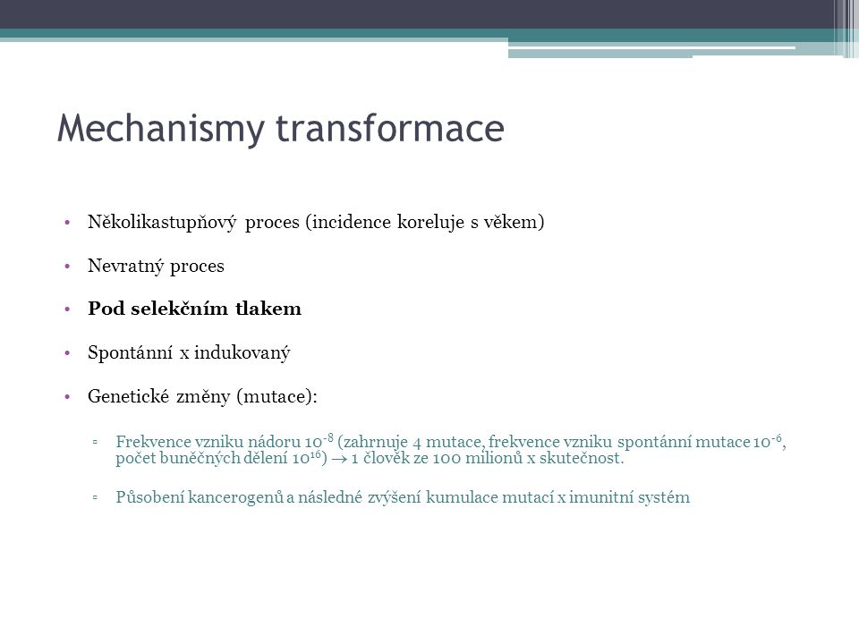 Mechanismy transformace
