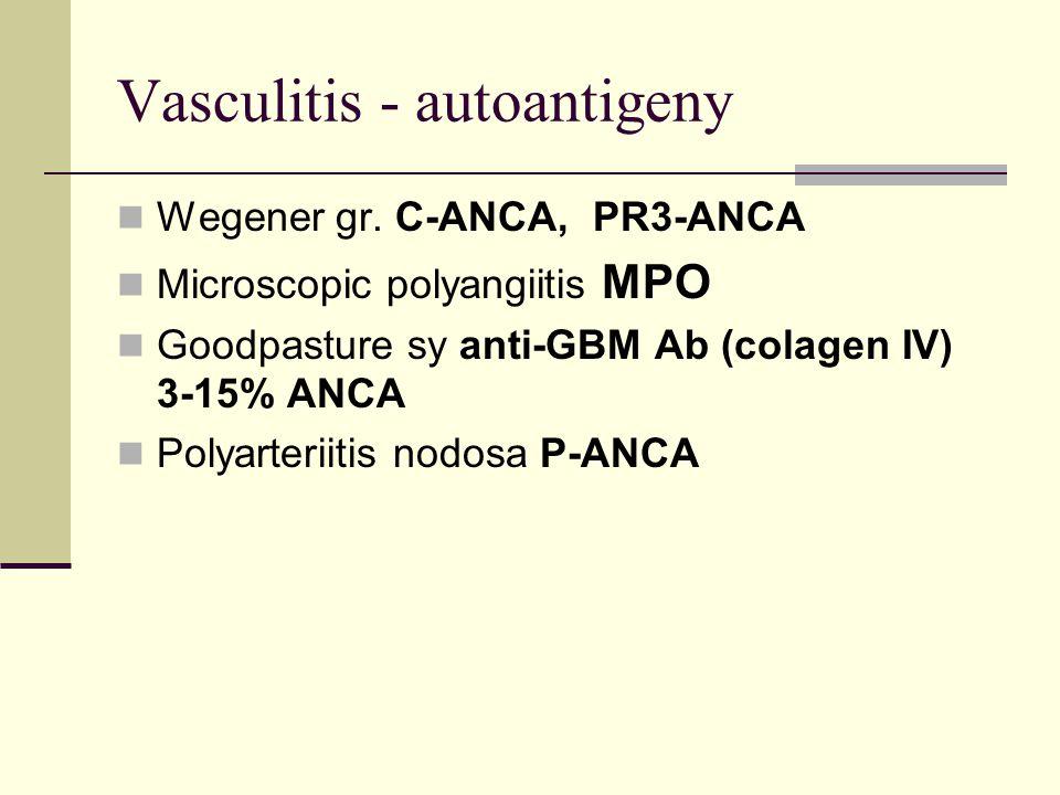 Vasculitis - autoantigeny