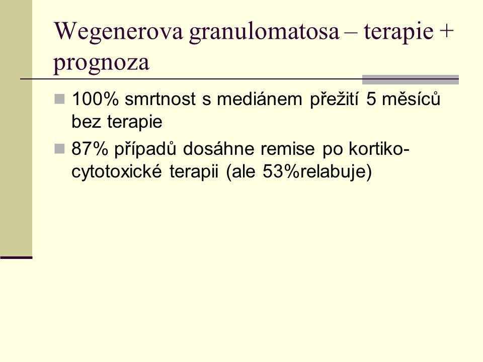 Wegenerova granulomatosa – terapie + prognoza