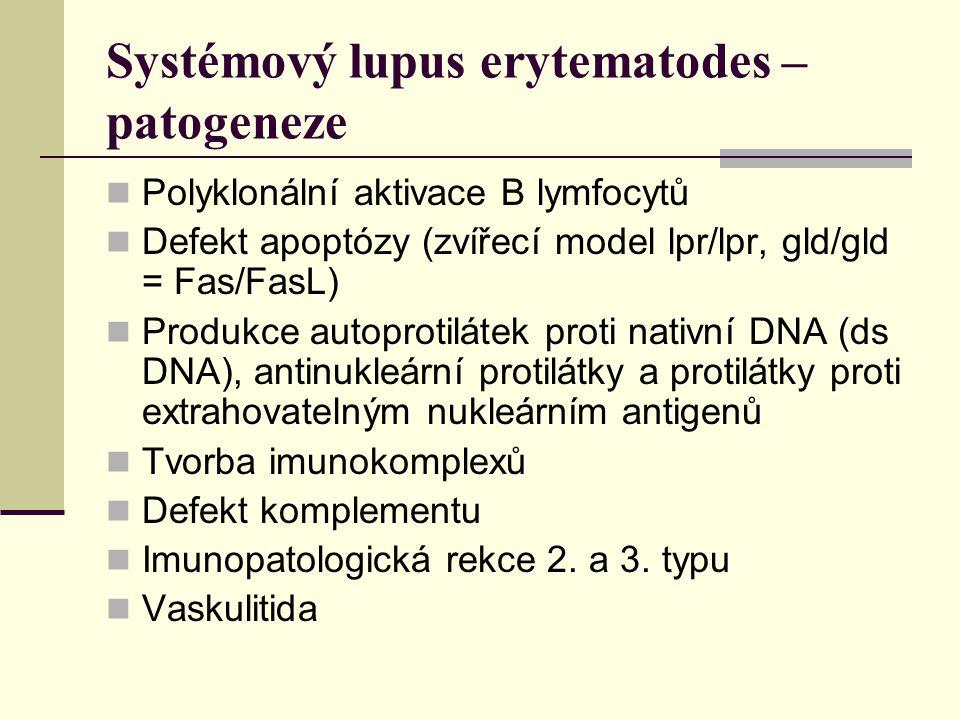 Systémový lupus erytematodes – patogeneze