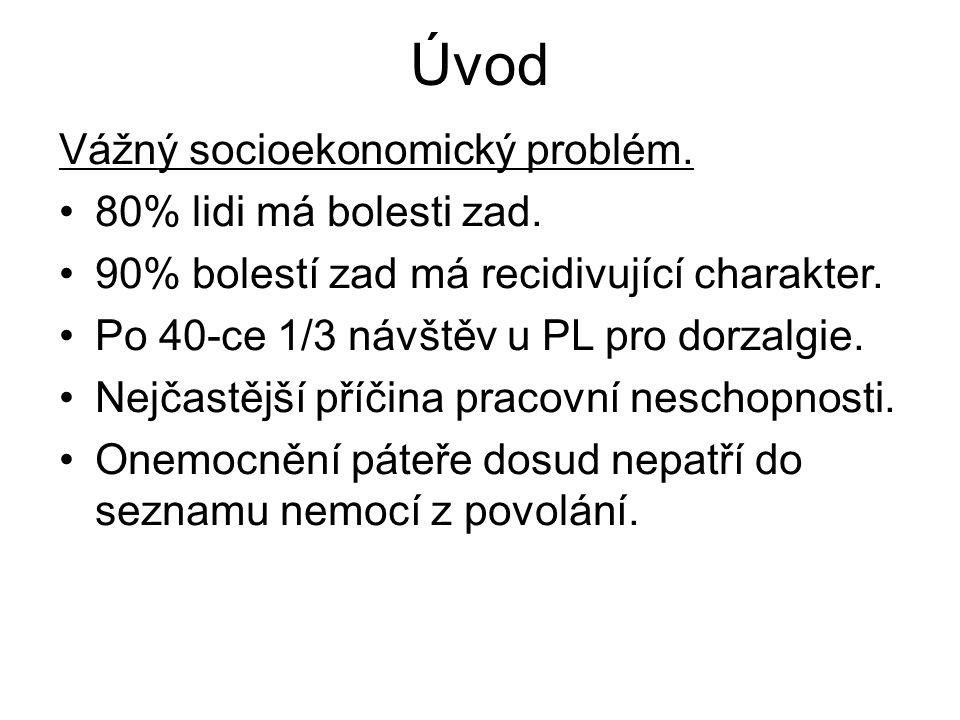 Úvod Vážný socioekonomický problém. 80% lidi má bolesti zad.