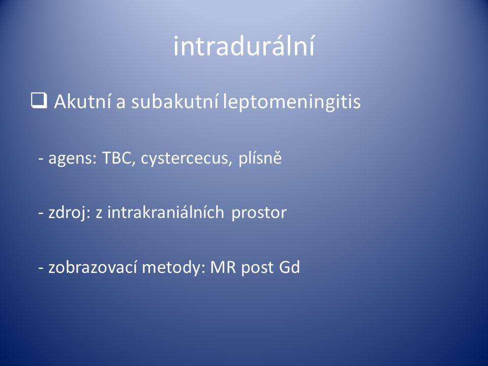 intradurální Akutní a subakutní leptomeningitis