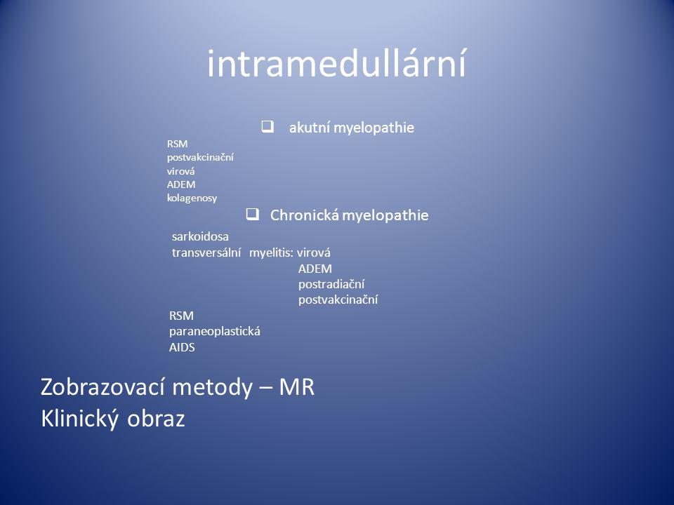 Chronická myelopathie