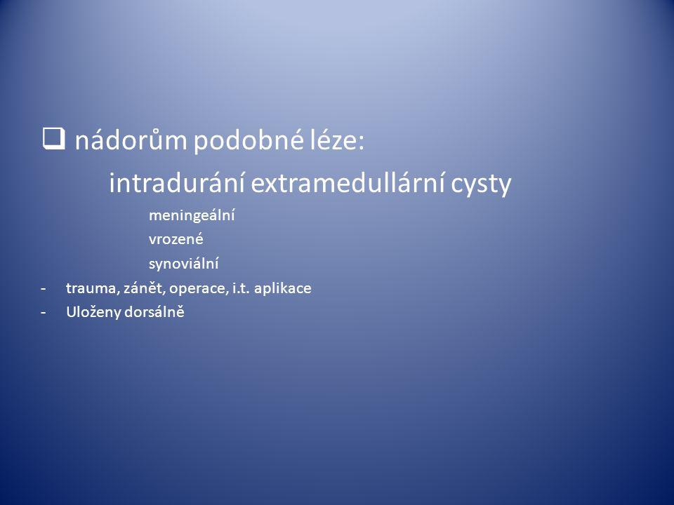 intradurání extramedullární cysty
