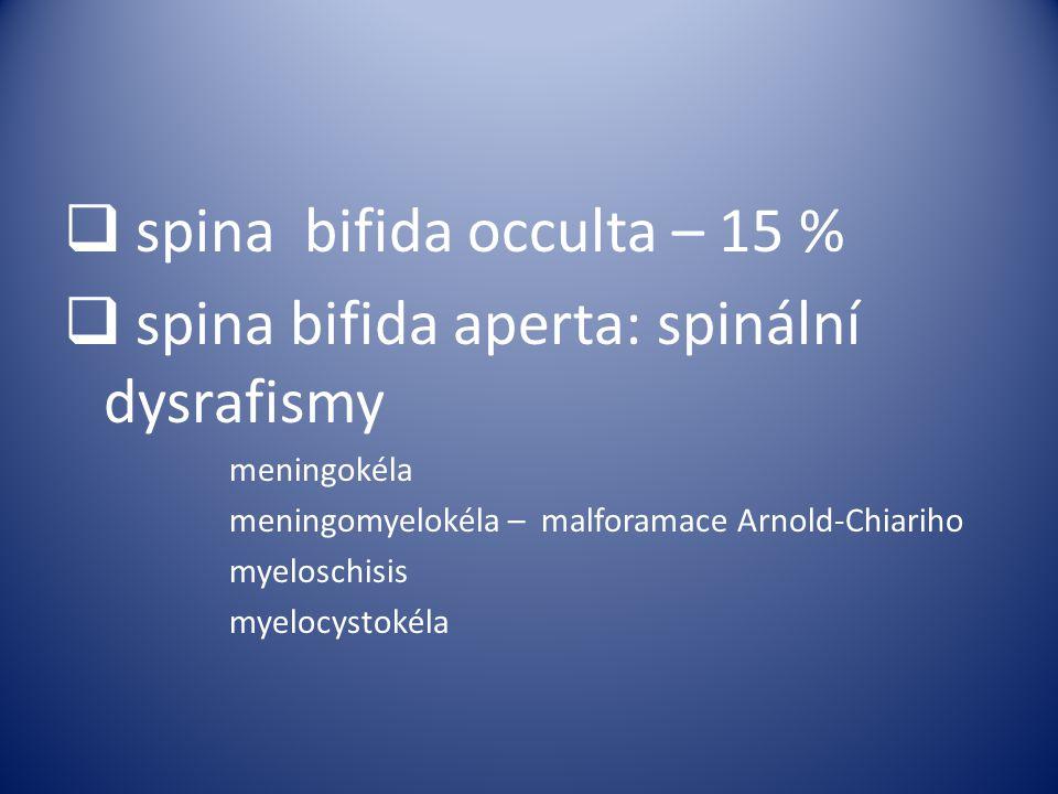 spina bifida occulta – 15 % spina bifida aperta: spinální dysrafismy