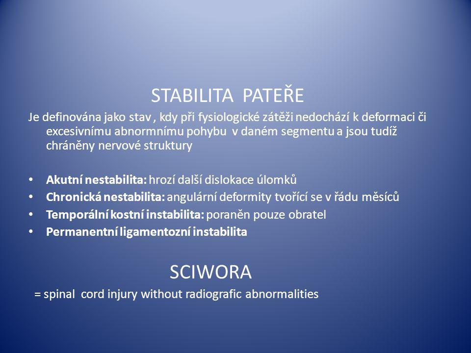 STABILITA PATEŘE