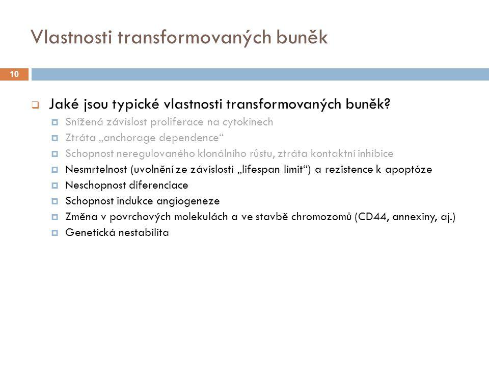 Vlastnosti transformovaných buněk