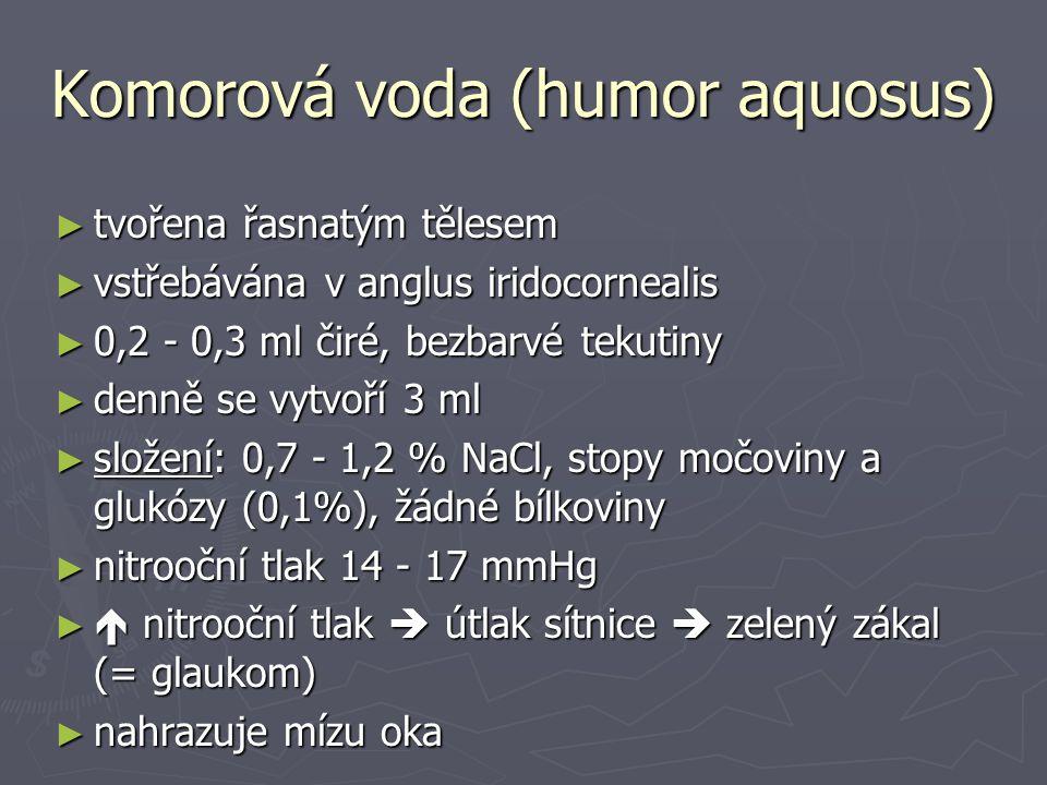 Komorová voda (humor aquosus)
