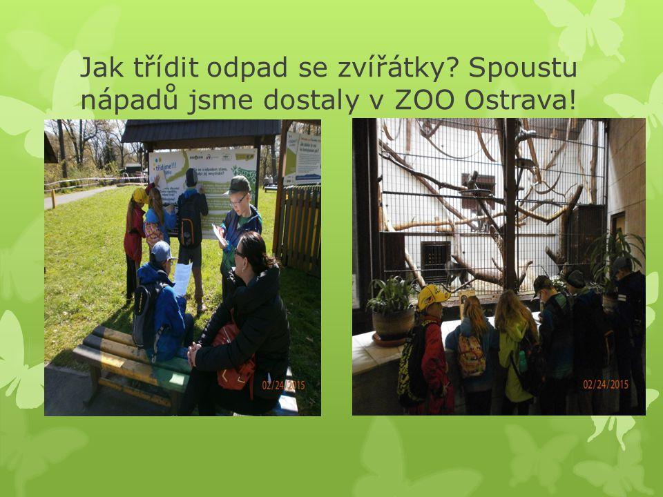 Jak třídit odpad se zvířátky Spoustu nápadů jsme dostaly v ZOO Ostrava!