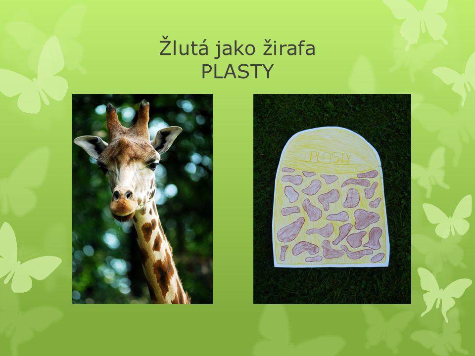 Žlutá jako žirafa PLASTY
