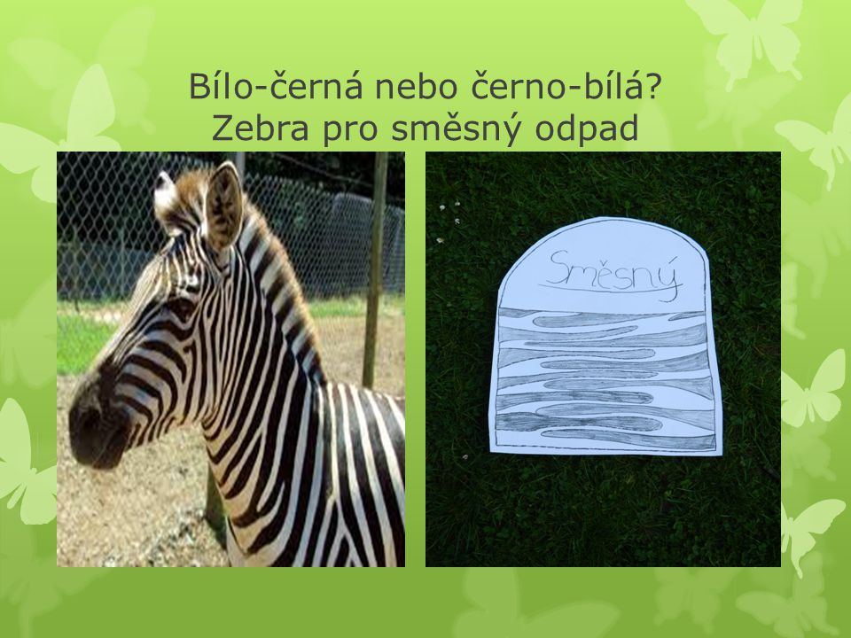 Bílo-černá nebo černo-bílá Zebra pro směsný odpad