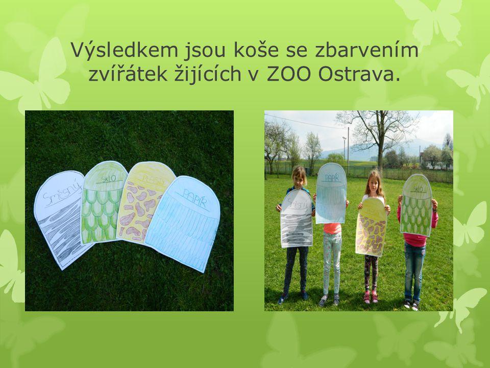 Výsledkem jsou koše se zbarvením zvířátek žijících v ZOO Ostrava.