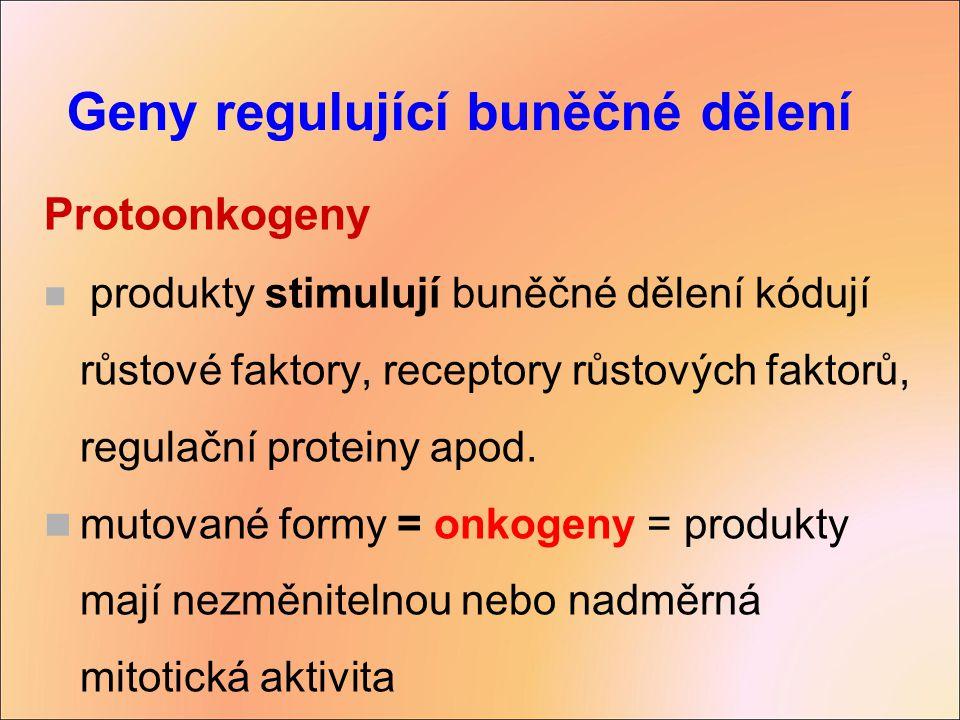 Geny regulující buněčné dělení
