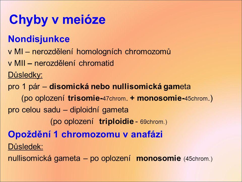 Chyby v meióze Nondisjunkce Opoždění 1 chromozomu v anafázi