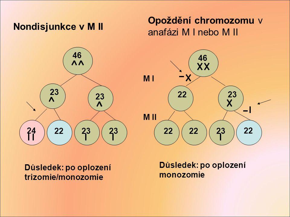 Opoždění chromozomu v anafázi M I nebo M II Nondisjunkce v M II