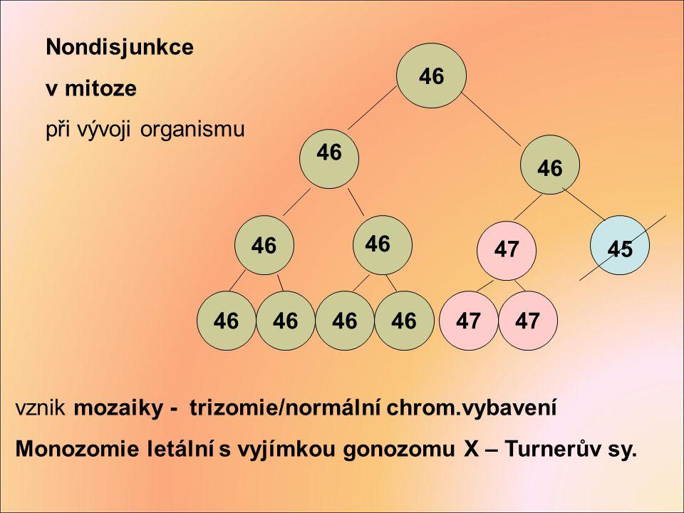Nondisjunkce v mitoze. při vývoji organismu. 46. 47. 45. vznik mozaiky - trizomie/normální chrom.vybavení.