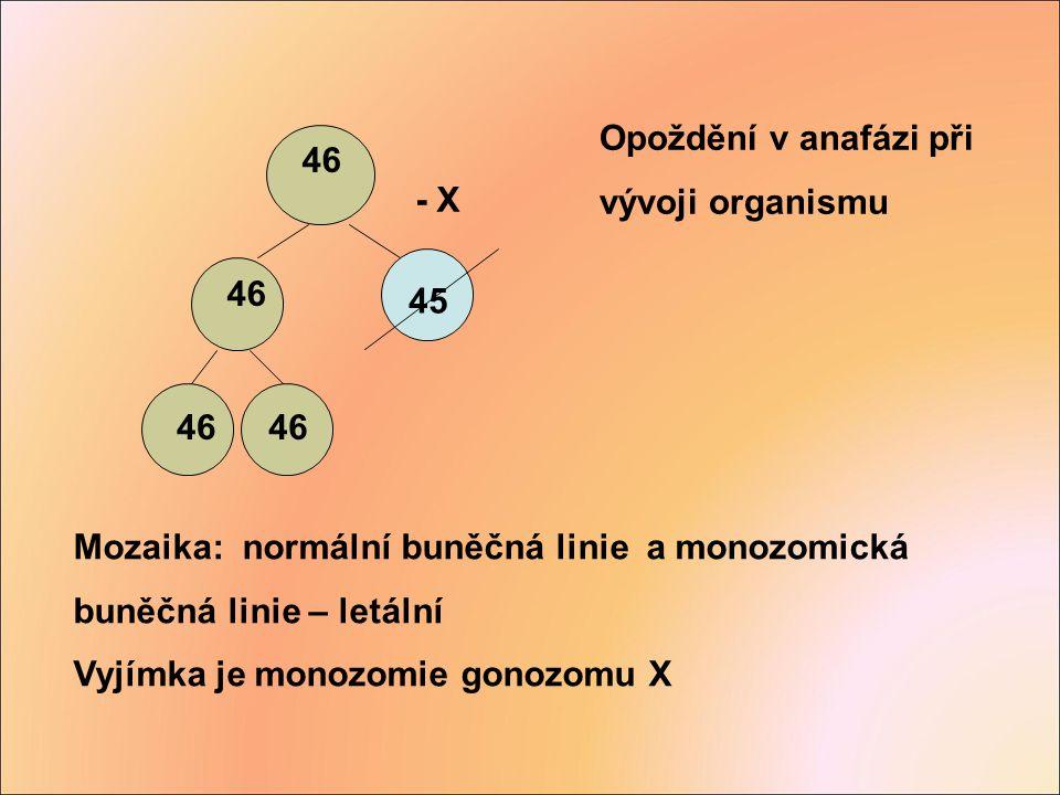 Opoždění v anafázi při vývoji organismu