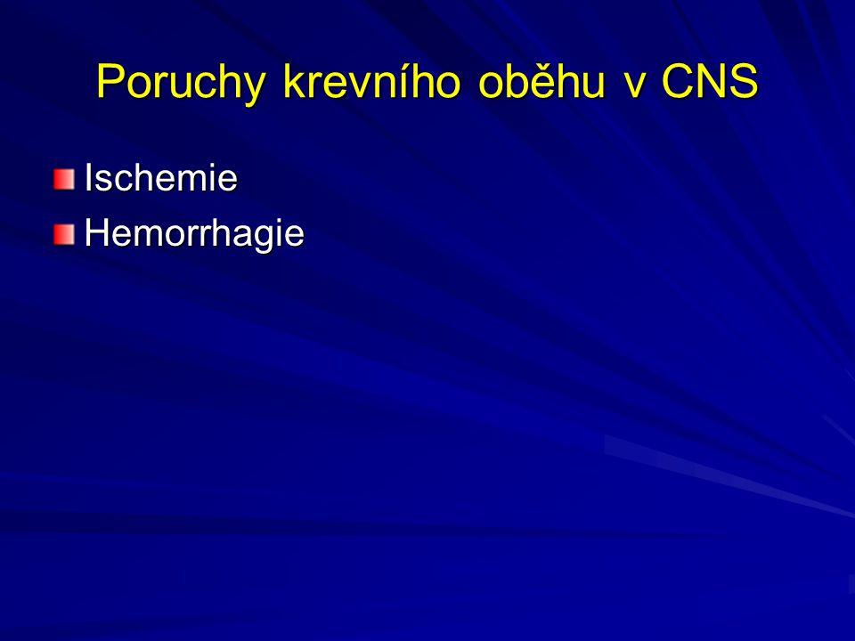 Poruchy krevního oběhu v CNS