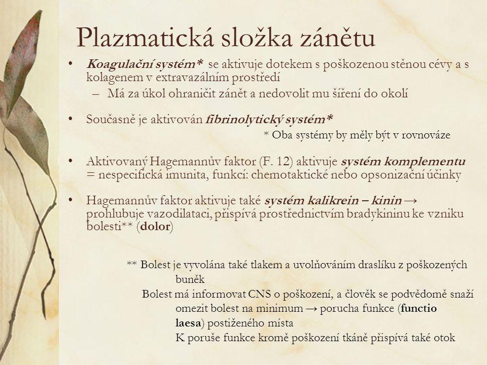 Plazmatická složka zánětu