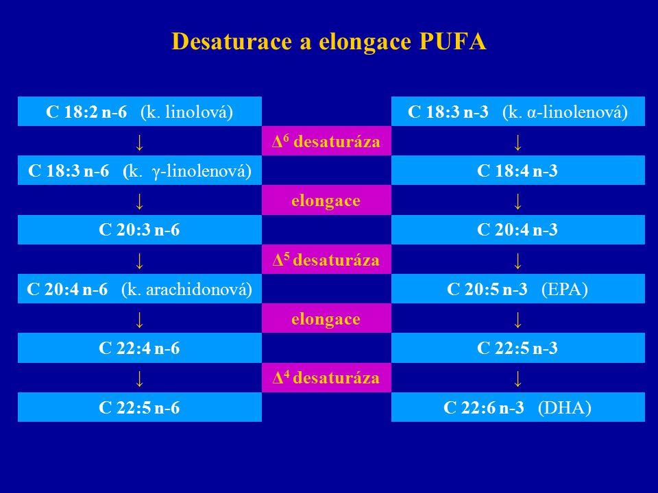 Desaturace a elongace PUFA