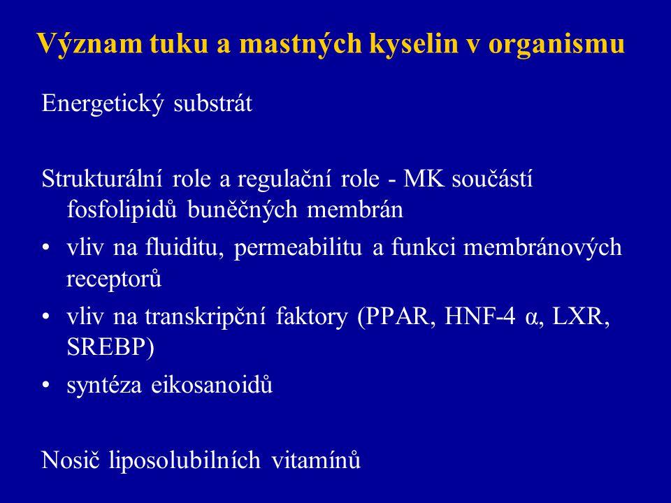Význam tuku a mastných kyselin v organismu