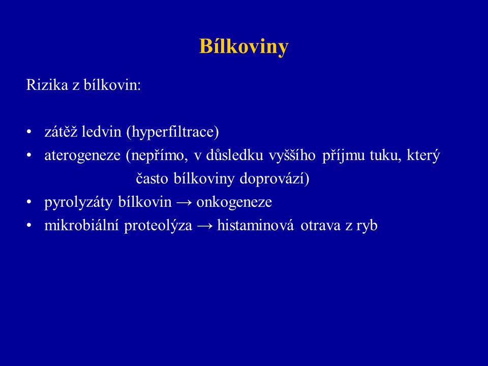 Bílkoviny Rizika z bílkovin: zátěž ledvin (hyperfiltrace)
