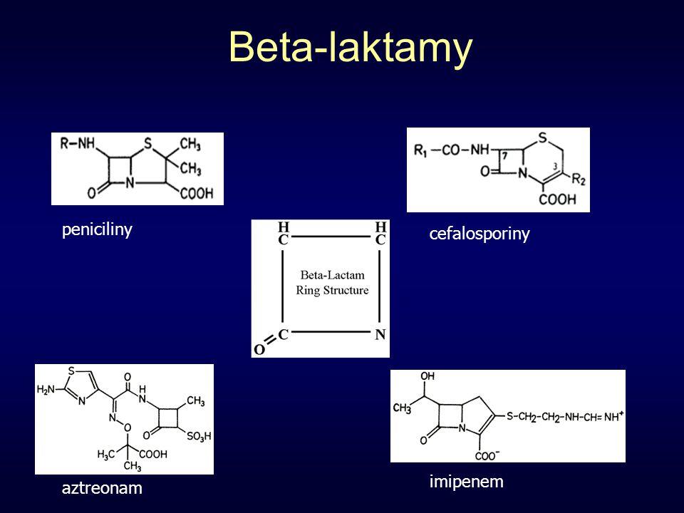 Beta-laktamy peniciliny cefalosporiny imipenem aztreonam