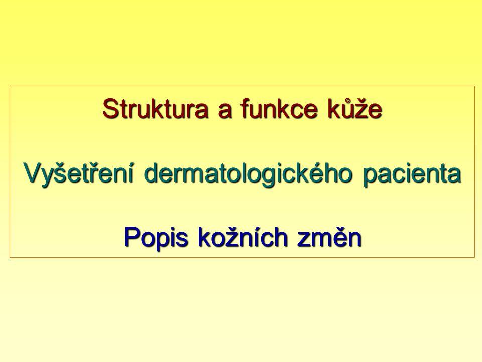 Struktura a funkce kůže Vyšetření dermatologického pacienta Popis kožních změn