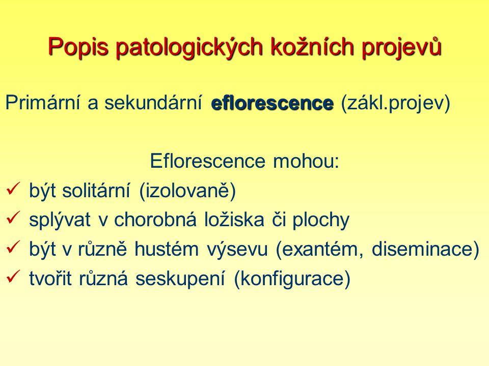 Popis patologických kožních projevů