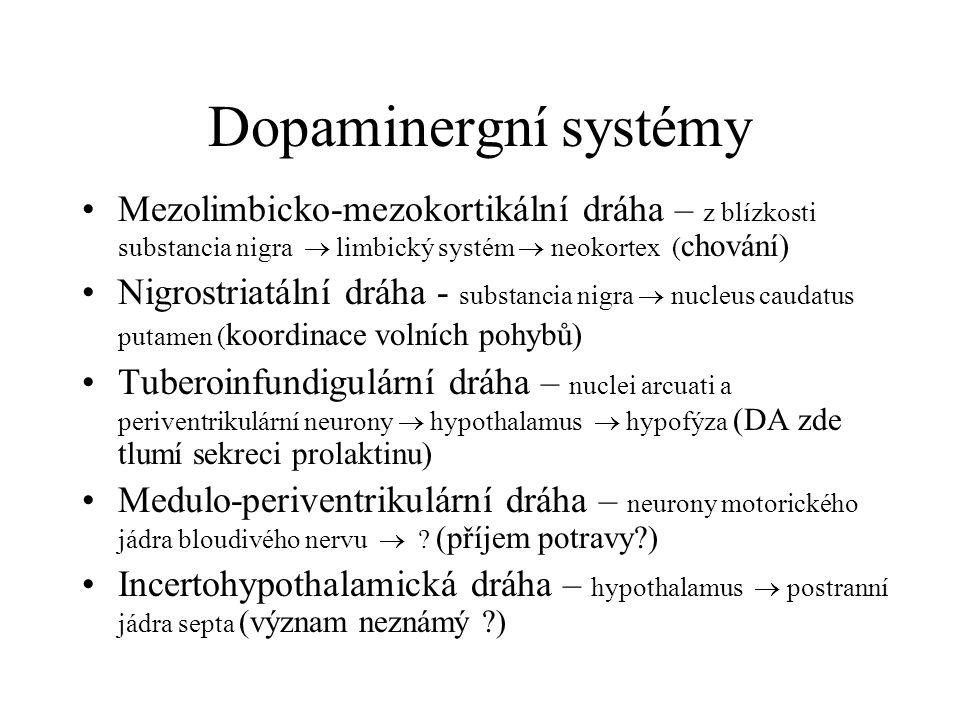 Dopaminergní systémy Mezolimbicko-mezokortikální dráha – z blízkosti substancia nigra  limbický systém  neokortex (chování)