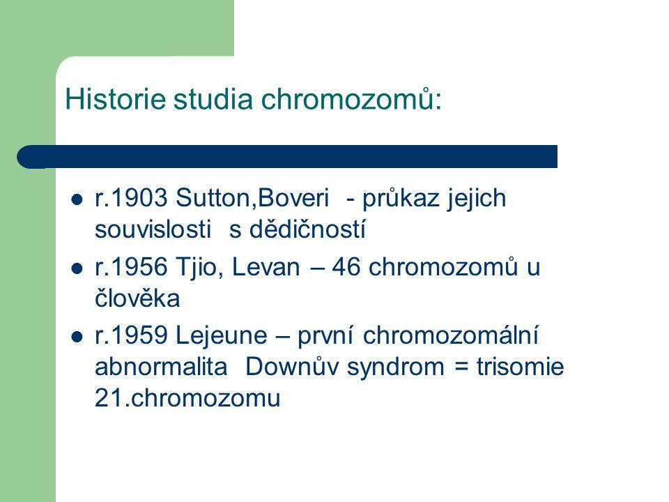 Historie studia chromozomů: