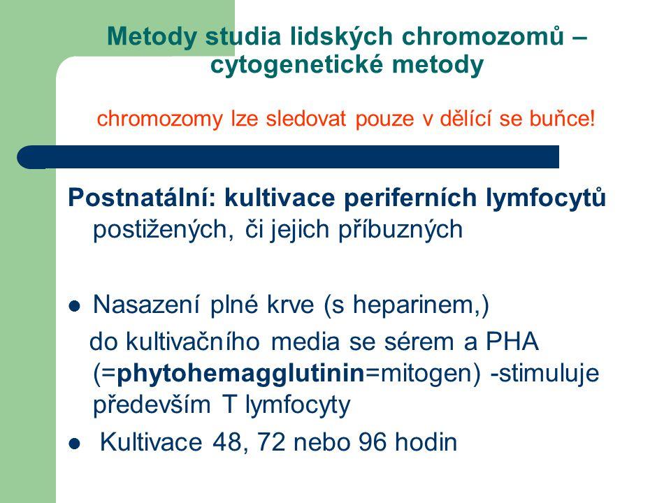 Metody studia lidských chromozomů – cytogenetické metody chromozomy lze sledovat pouze v dělící se buňce!