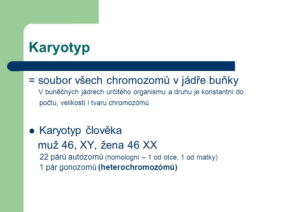 Karyotyp = soubor všech chromozomů v jádře buňky Karyotyp člověka