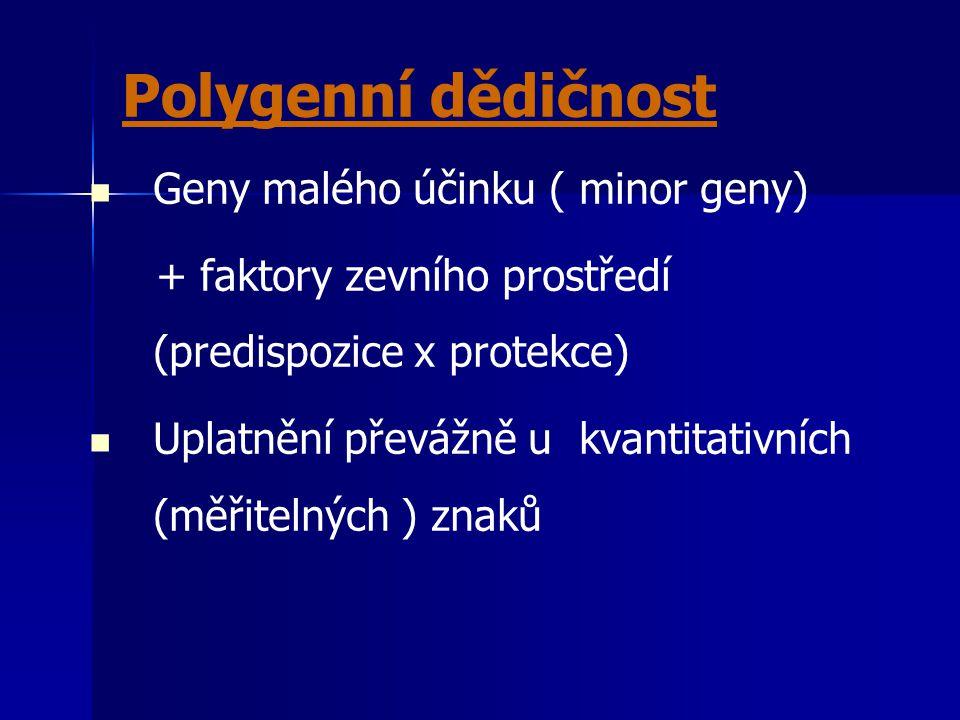 Polygenní dědičnost Geny malého účinku ( minor geny)